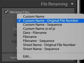 3 Ways to Rename Your Files in Lightroom – Pretty Presets