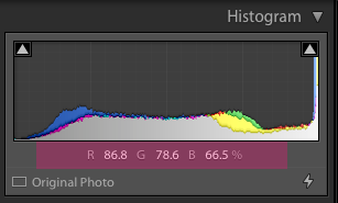 How to Retouch Skin in Lightroom Using Histogram