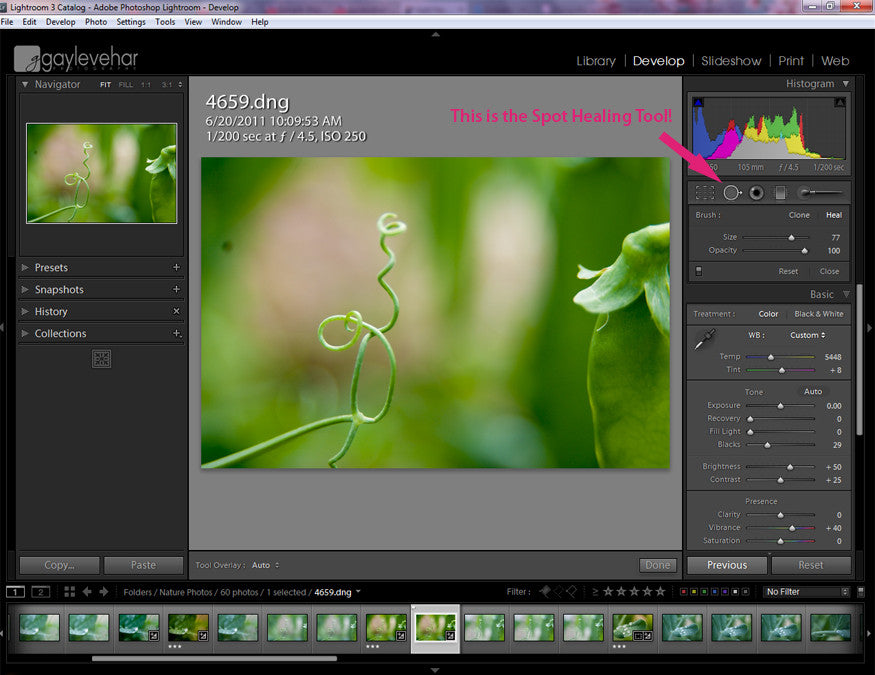 Lightroom's Spot Healing Tool | Pretty Presets Lightroom Tutorial