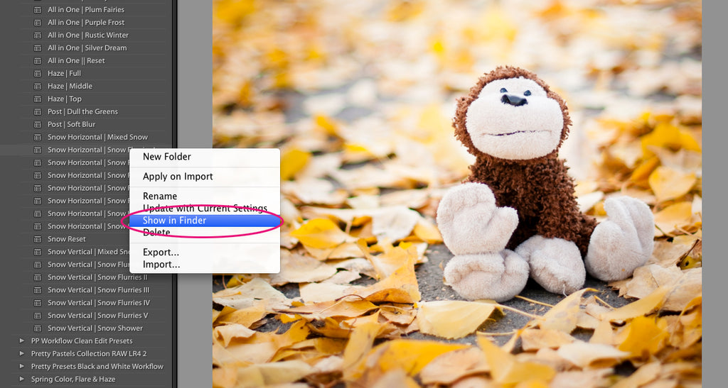 3 Steps to Transfer Your Lightroom Presets to a New Computer