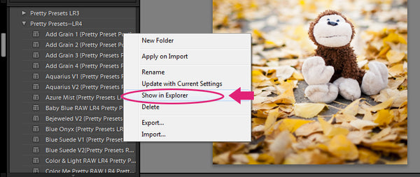 3 Steps to Transfer Your Lightroom Presets to a New Computer | Pretty Presets Lightroom Tutorial