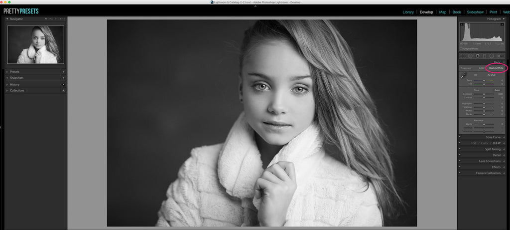 Changing Your Photos to Black and White in Lightroom | Pretty Presets Tutorial