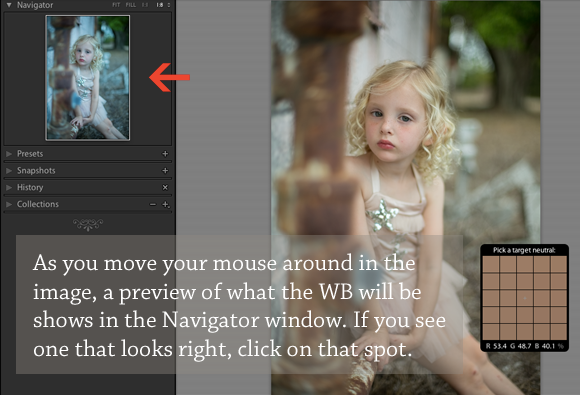 Lightroom White Balance Preview