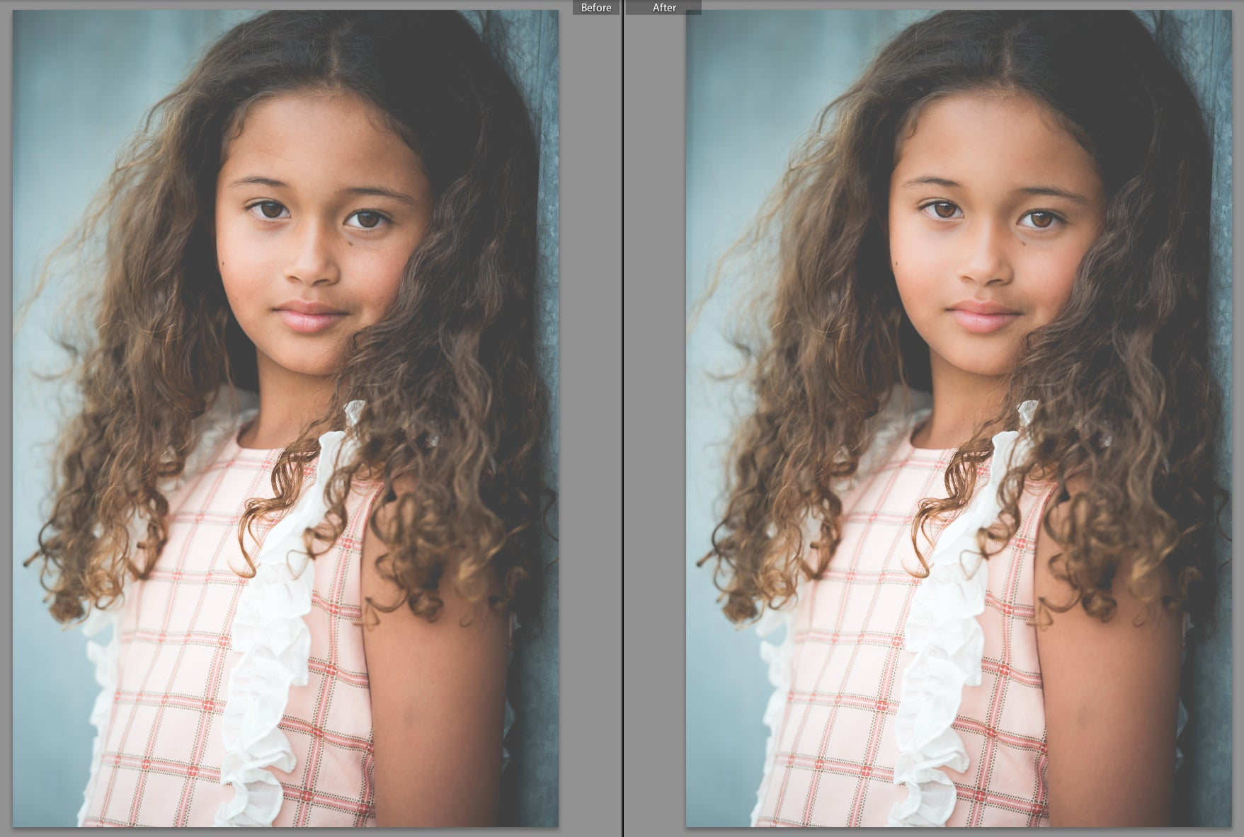 Mastering Lightroom in 7 Days: Developing your Photos with Presets