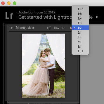 Zoom choices in the navigator panel in Lightroom