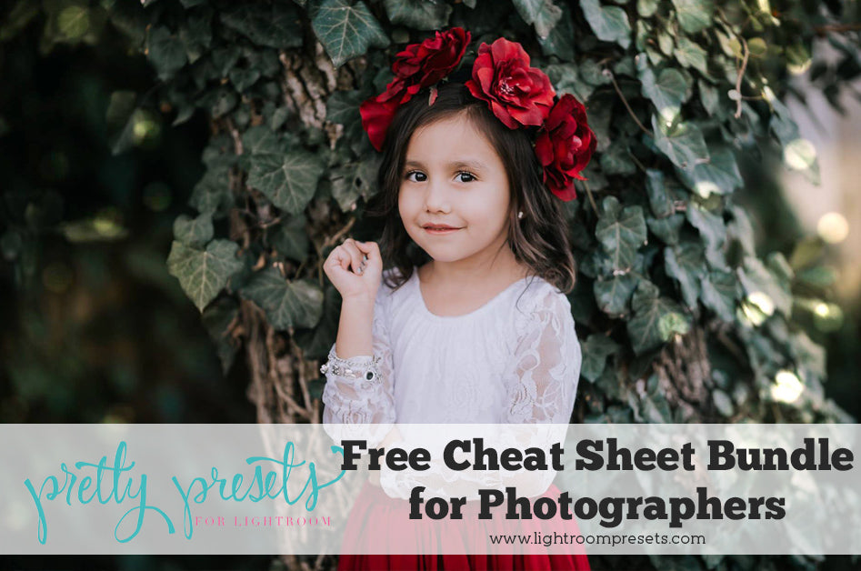 Cheat Sheet Bundle for Photographers