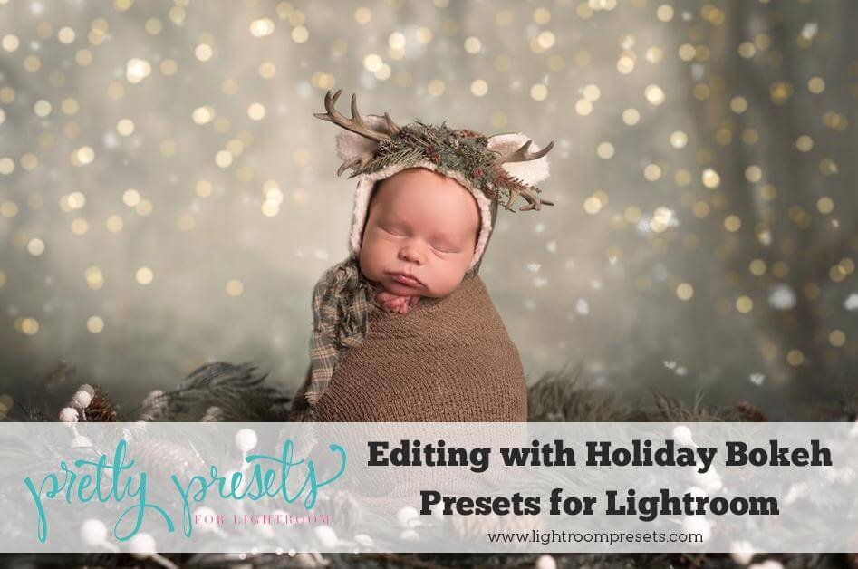 Using Bokeh Presets in Lightroom