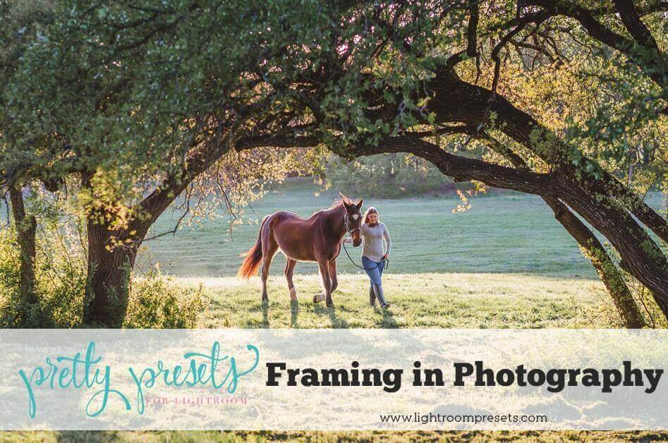 Framing Photography Definition