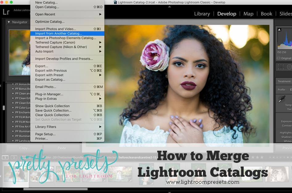 How to Merge Lightroom Catalogs – Pretty Presets for Lightroom