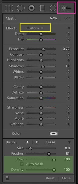 Flow and density for Lightroom brushes