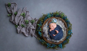 Newborn Digital Backdrop: Blueberry Hill