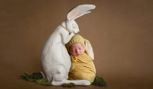Newborn Digital Backdrop: Darling Rabbit