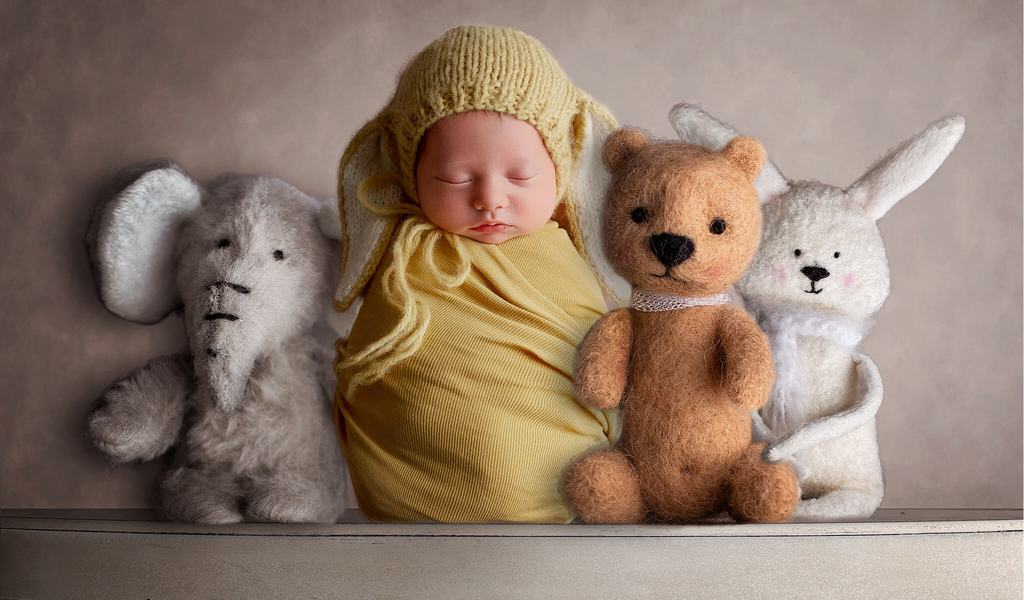 Newborn Digital Backdrop: Furry Friends