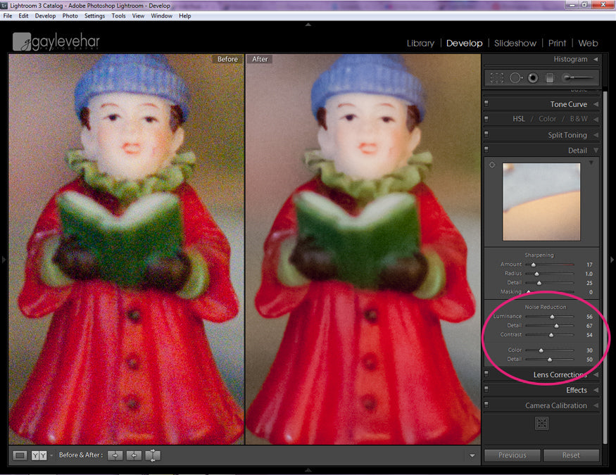 Reducing Noise in High ISO Photos in Lightroom | Lightroom Presets