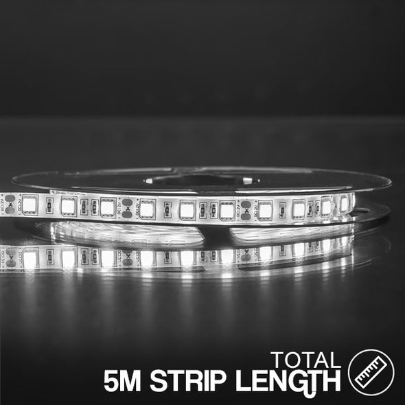 LED STRIP LIGHT 12V WATERPROOF 5M ROLL