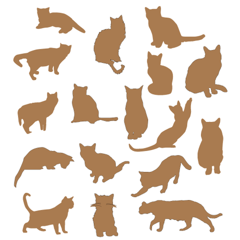 patterns-rescued-tails-cat-cats