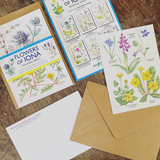 Flowers of Iona Postcard Pack
