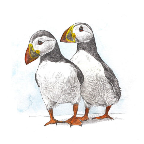 Mounted Print - Pair of Puffins