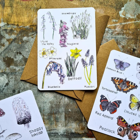 Collections Pack - 9 Nature Postcards