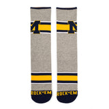 Michigan Wolverines - Varsity Stripe Grey