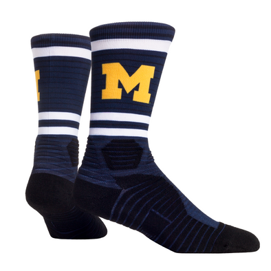 Michigan Wolverines - Performance - Speed Stripes