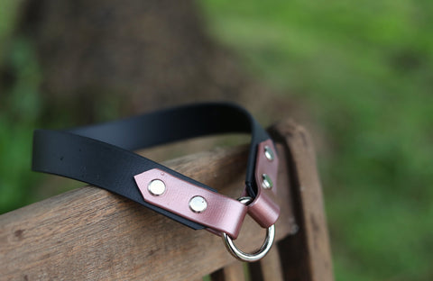 Lovedale Tag Collar 1""