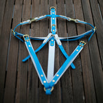Flat lay Blue and White Y front biothane dog harness. Australian made.