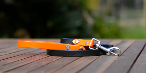 pvc biothane dog leash two tone
