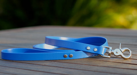 Cyan Blue Dog Leash
