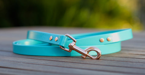Rose Gold and Ocean Dog Leash