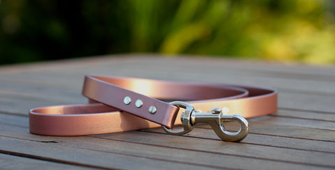 Copper and Silver dog lead PVC Biothane