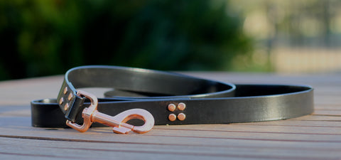 Rose Gold And Black PVC Biothane Dog Lead