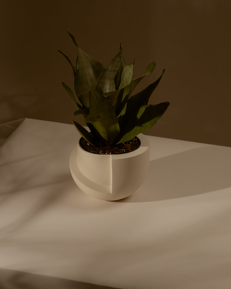 Vayu Ceramic Tabletop Planter Snow - L&L