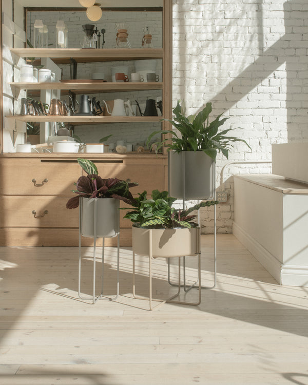 Kena Plant Stand - Dove S