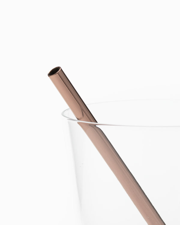 The Porter Straw - Large Copper