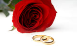 two wedding rings and a rose