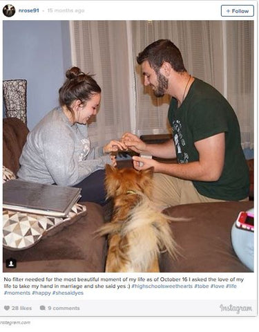 Pet friendly engagement proposal
