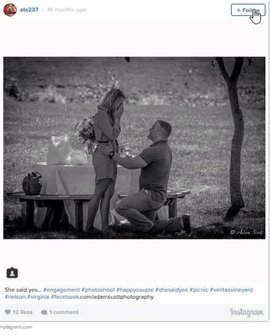 picnic engagement proposal