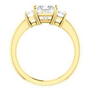 Cubic Zirconia Engagement Ring- The Andrea (Customizable Princess Cut 3-stone with Dual Emerald Cut Accents)