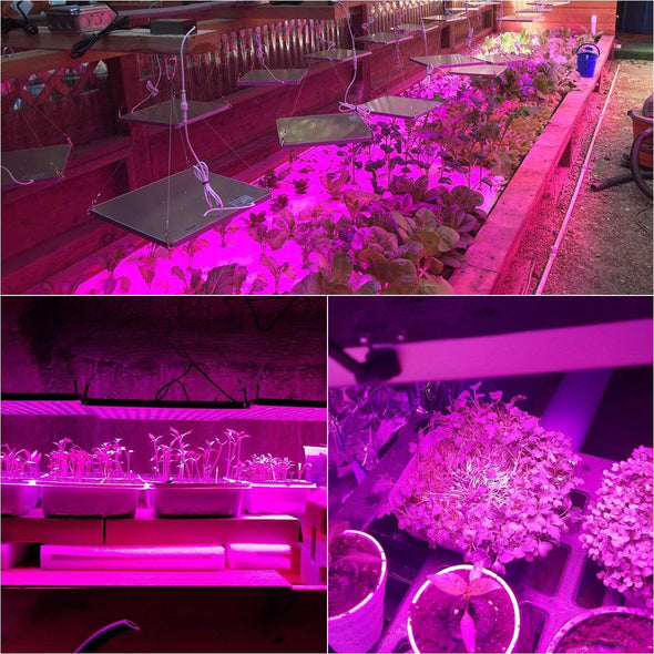 Full Spectrum LED Grow Light 75W, Panel Grow Lamp Plant Lights Red Blue Grow Lights for Indoor Plants, Vegetable, Flower, Hydroponics, Greenhouse, Seedling, Succulents