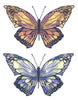 Two Colour Butterflies