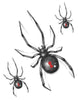 black widow tattoo, spider tattoo, black widow spider temporary tattoo