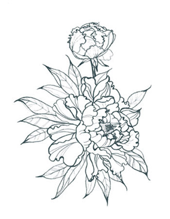 Peonies Outline Alt (Small)