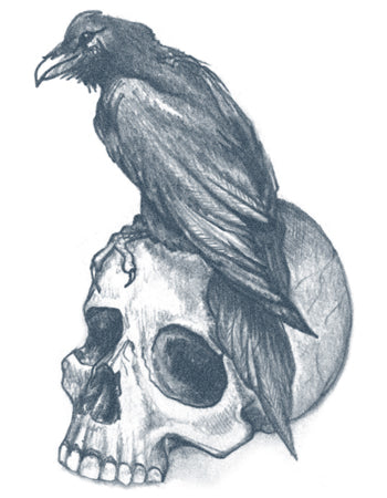 Raven With Skull