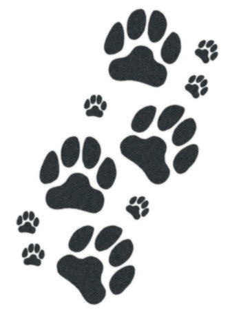 dog and puppy paws temporary tattoo