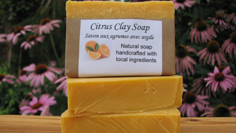 Citrus Clay Soap