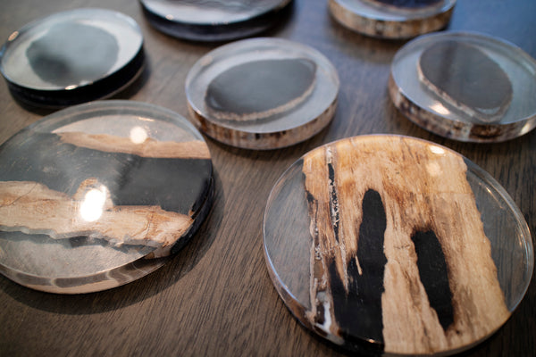 Petrified Wood Coaster