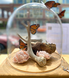 Tall Dr. Anthony Fauci Mug by Justin Rothshank