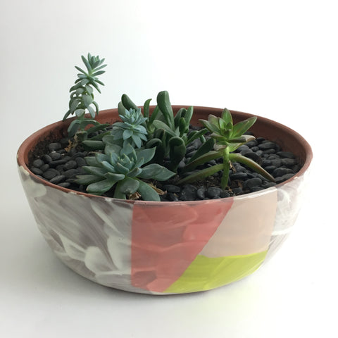 Color Block Planter Cactus Garden by Sarah Steininger Leroux