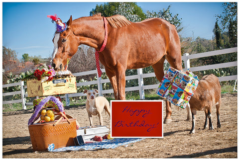 Goat, Horse, and Dog Birthday Card
